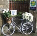 Le vélo fleuri se situe au Portail de nos chambres d'hôtes